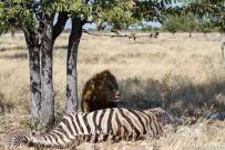 Namibia_21.jpg