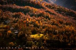 Paesaggi - Natura