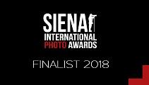 Finalist__Logo_2018.jpg