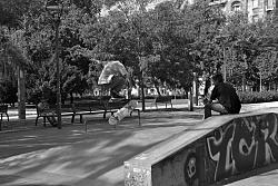 Skate Park Budapest