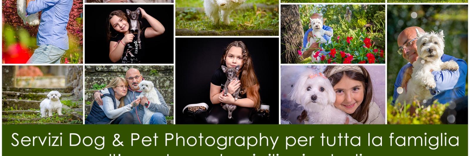 Dog & Pet Photography