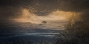 Paesaggi | Natura