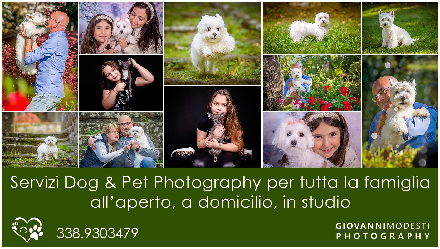 Dog & Pet Photography, Fotografiamo i tuoi animali del cuore ...col cuore. Fotografo Dog Bologna. Servizi Dog & Pet Photography per tutta la famiglia, per aziende e operatori del settore, all'aperto, a domicilio, in