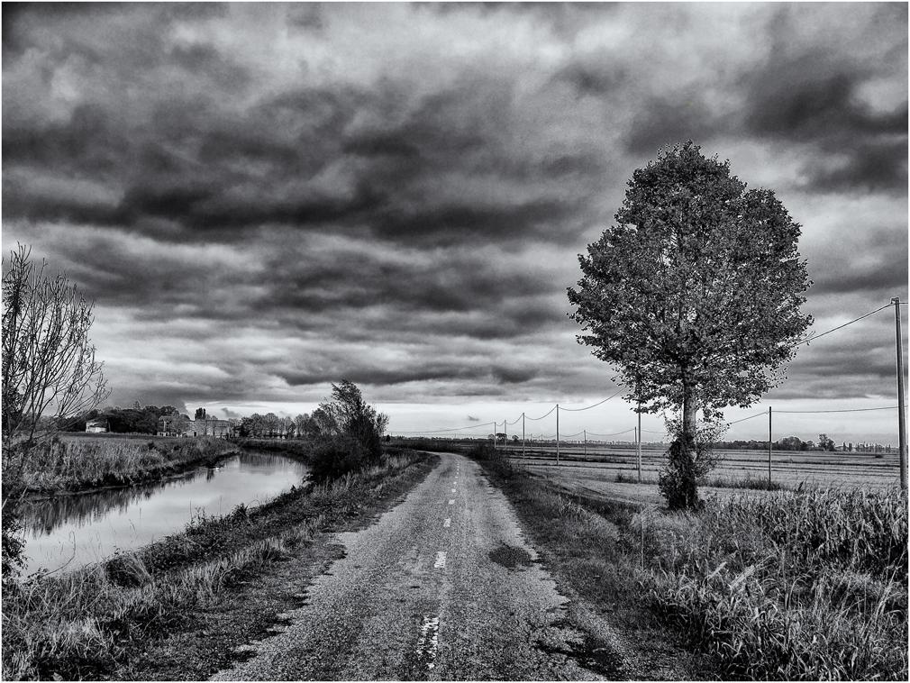 Franzona (VE) - 2013 -